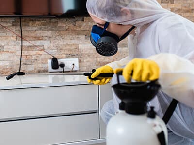 Pest Control Bentonville AR