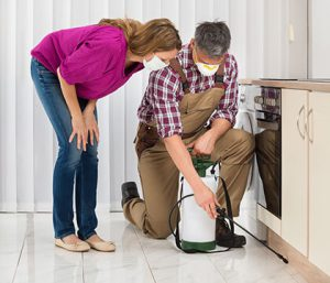 Pest Control Inspections