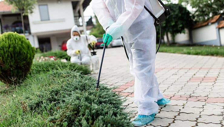 Quality Residential Pest Control & Inspection | 24H Pest Pros