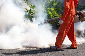 Pest Control Albany CA