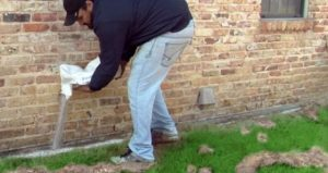Pest Control Channelview TX