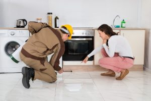 Pest Control Clemmons NC