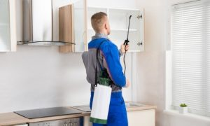 Pest Control Coppell TX
