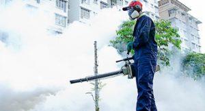 Pest Control Culpeper VA