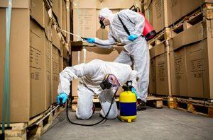 Pest Control Cupertino CA