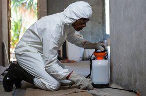 Pest Control Erlanger KY