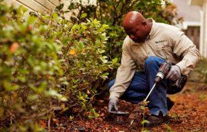 Pest Control Glen Burnie MD