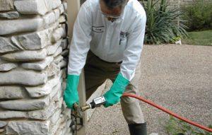 Pest Control Granite Bay CA
