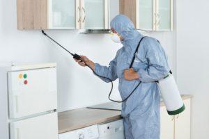 Pest Control Huntsville AL