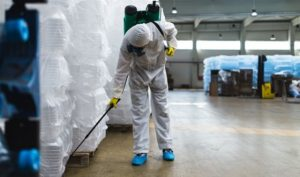 Pest Control Lawrence KS