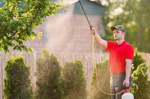 Pest Control Mason City IA