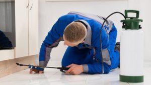 Pest Control Meriden CT