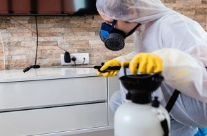 Pest Control Muskego WI