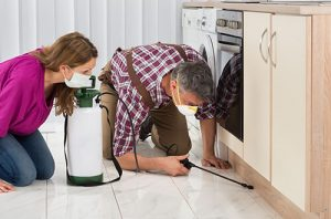 Pest Control North Fort Myers FL