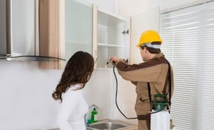 Pest Control Raymore MO