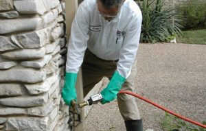 Pest Control San Gabriel CA