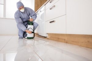 Pest Control Scarsdale NY