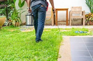 Pest Control Sterling Heights MI