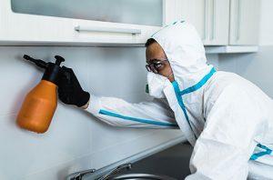 Pest Control Visalia CA