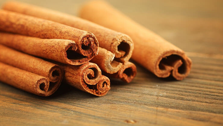 cinnamon for bed bugs